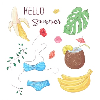 Hello summer. set of tropical fruits and elements. vector illustration hand drawing