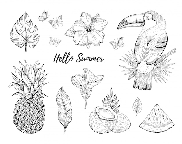 Привет лето тропический набор иллюстраций