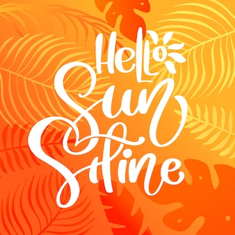 Hello sunshine calligraphy lettering text for greeting card.
