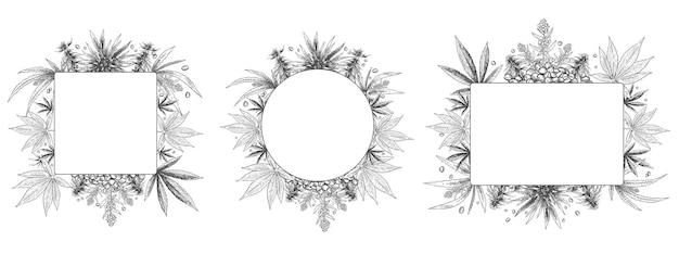 麻フレーム。手描きの大麻植物、スケッチ麻の葉とマリファナの種子フレームセット。