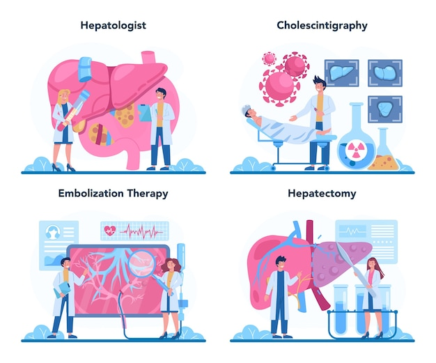 肝臓専門医の概念セット
