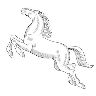 白で隔離のジャンプ馬の紋章手描きベクトルイラスト