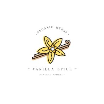 Приправы и специи - цветок и стручки ванили. типография и значок в модном линейном стиле.