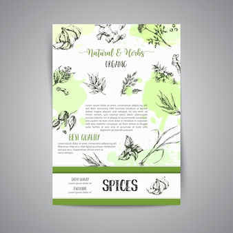 Herb and spices background. organic garden herbs engraving