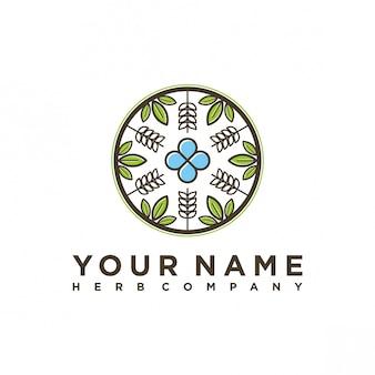 Дизайн логотипа компании herb