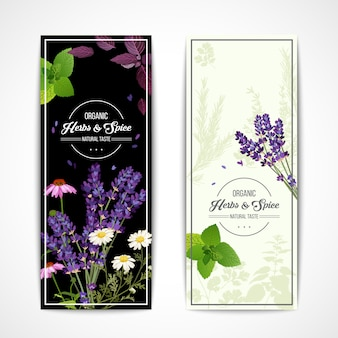 Herbal banners with wildflowers and spices