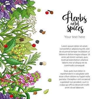 Herbal card design with spices and herbs