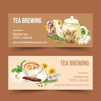 Herbal tea banner with chamomile, chrysanthemum, rosemary watercolor illustration.