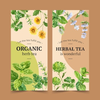 Herbal tea flyer with savory, parsley, peppermint watercolor illustration.