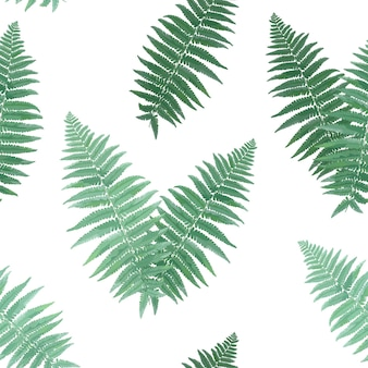ハーブと葉の植物のシームレスなパターン。シダの葉の自然な背景。壁紙プリント熱帯装飾のための花の森の野外植物のデザイン。ベクトルイラスト