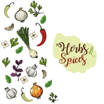 ハーブとスパイスの植物と臓器の食品の背景