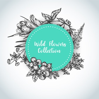 Herbs and wild flowers background Vintage collection of Plants Vector illustrations