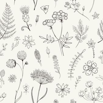 ハーブと野生の花。植物学パターン