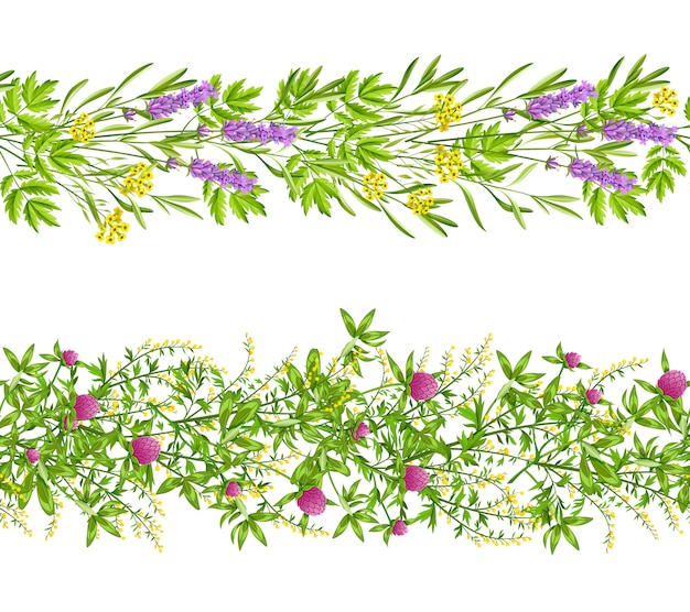 ハーブと野生の花のシームレスなパターン