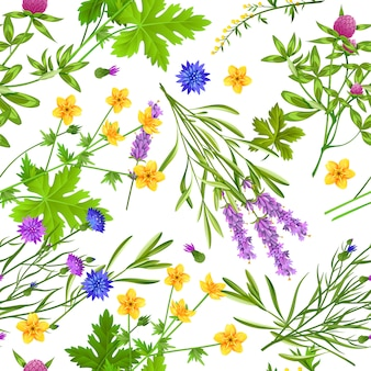 Травы и дикие цветы бесшовные модели