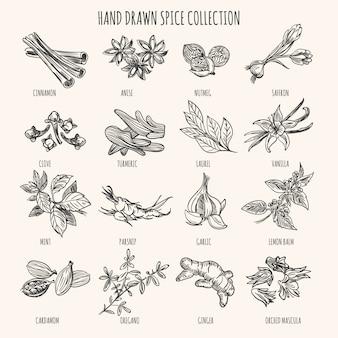 Herbs, seasonings and seeds ingredients