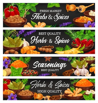 Herbs and spices, fresh food seasoning and condiment cartoon banners