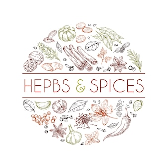 Herbs and spices logo