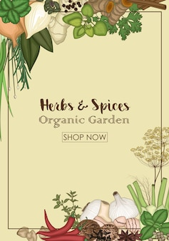Herbs and spices organic garden store banner