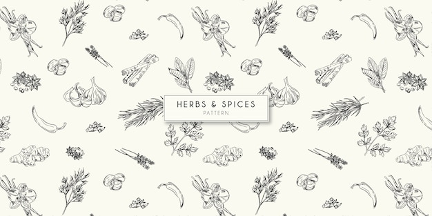 Herbs and spices   pattern