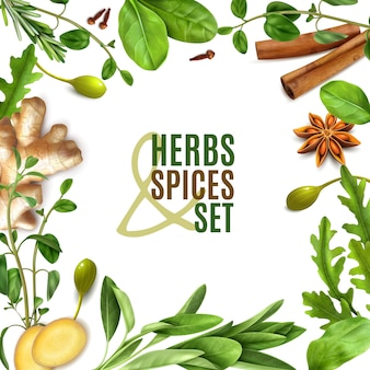 Herbs spices realistic square frame with fresh rosemary thyme rocket spinach leaves cinnamon ginger anise