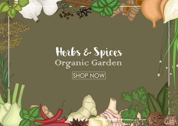Herbs and spices sale decorative banner