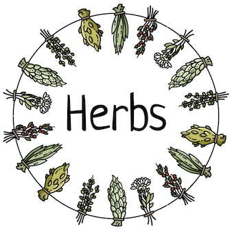 Herbs text in dried herbs