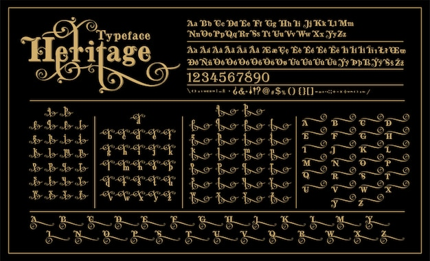 Heritage calligraphic alphabet wit alternative letters design