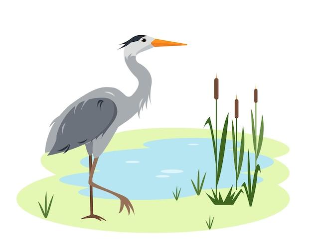 자연 호수 또는 연못에 헤론 새