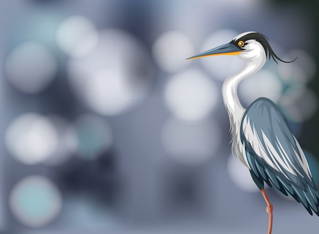 A heron on blurry background