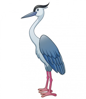 The heron isolated