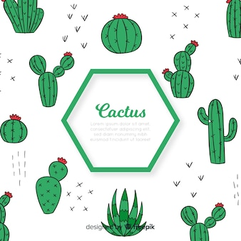 Hexagon cactus background