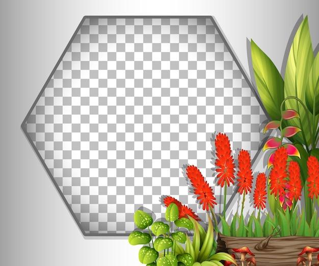 赤い花と葉のテンプレートで透明な六角形のフレーム