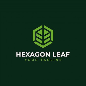 Hexagon leaf, eco, garden, botany, nature logo