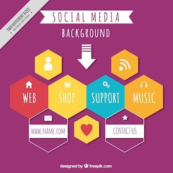 육각형 배경 및 소셜 네트워크