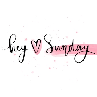 Hey love sunday. vector hand drawn lettering phrase. modern brush calligraphy.