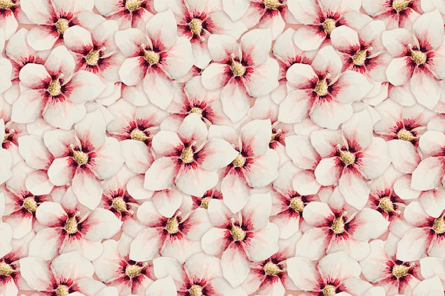 Hibiscus flower pattern vector background, remix from artworks by megata morikaga