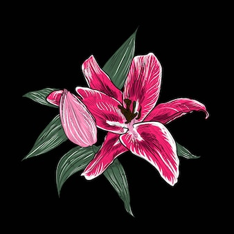 Hibiscus flowers and leaves in vintage style,  hand drawn botanical.