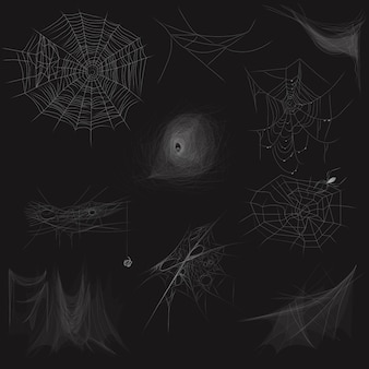 High quality set of spider web concept
