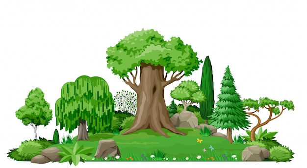 Холм в парке с травой, кустами и деревьями.