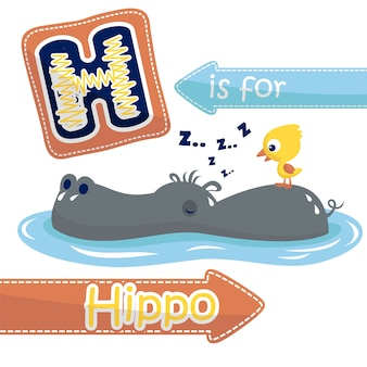 Hippo and duck cartoon in the swamp