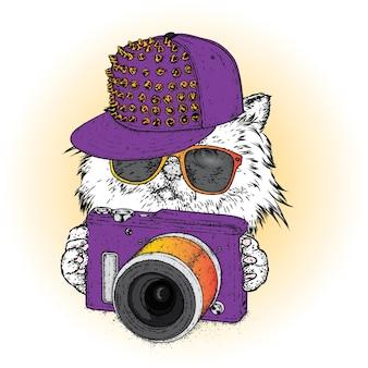 スタイリッシュな服を着た流行に敏感な猫