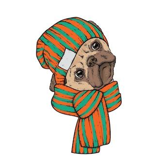 スタイリッシュな服を着た流行に敏感な犬