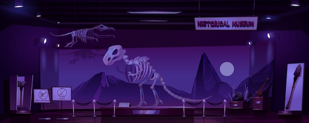 恐竜の骨格と考古学の展示物がある夜の歴史博物館。先史時代の動物と原始人の原始的な道具の展示の空の暗い部屋の漫画インテリア
