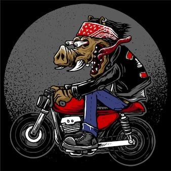 Hog the crazy rider