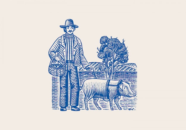 Hog and farmer for locating truffles mushrooms. domestic pig . engraved hand drawn vintage sketch. woodcut style.  illustration.
