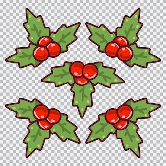 Holly berries with leaves vector cartoon simple set isolated on a transparent background.