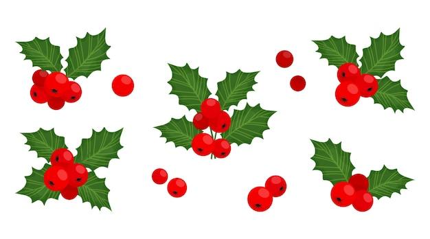 홀리 베리 크리스마스 기호, 휴일 식물, 겨울 그림