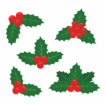 Holly plant set for cards