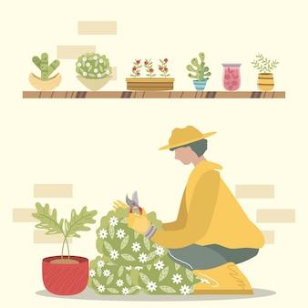 Home garden, gardener with scissors trimming bush plants in pots  illustration
